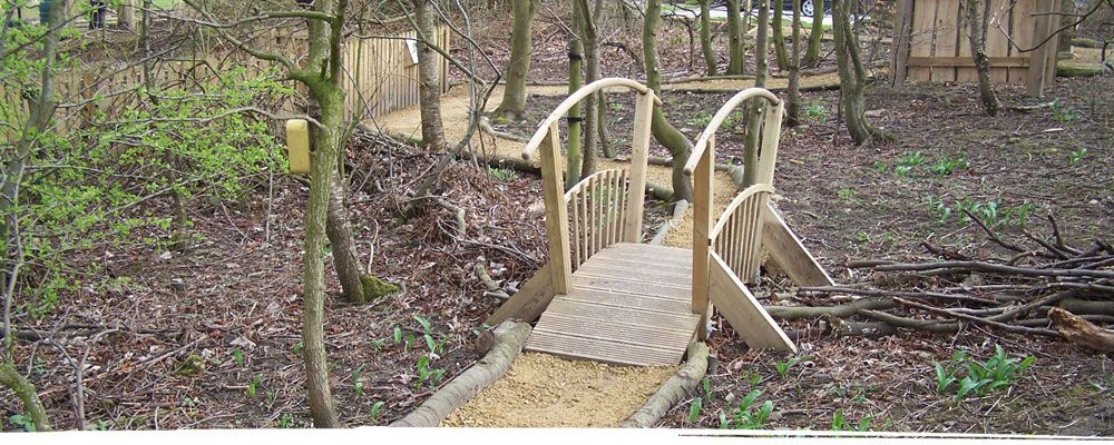 Wooden hump back bridge in forest near Shrewsbury